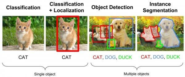 image segmentation versus classification